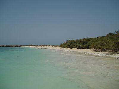 青い海・白い砂浜